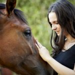 5 Points to Consider in Horse-Human Attachment Research